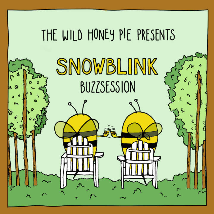 Snowblink